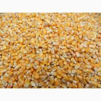 Куплю зерноотходы